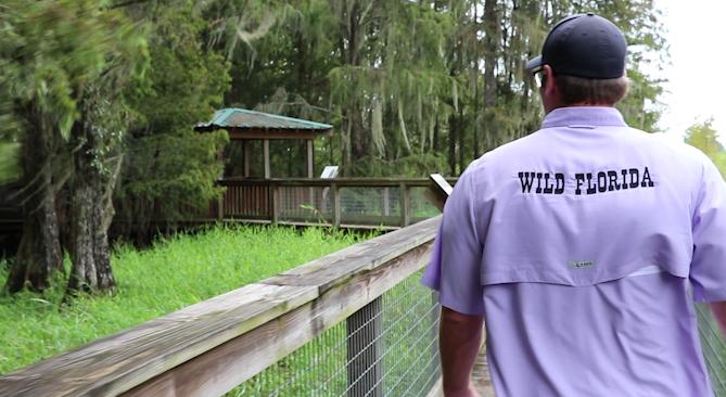 Sam Haught Wild Florida